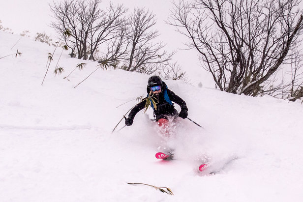 How To Ski Japan: The Skiing - ©Linda Guerrette