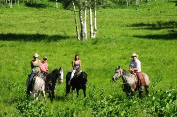 Utah's Rocky Mountains provide a beautiful backdrop for summertime horseback riding.  - © Rocky Mountain Outfitters