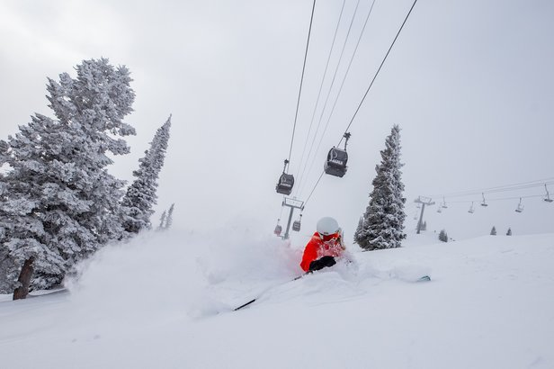 January's North American Snowfall Summary ©Aspen Skiing Company