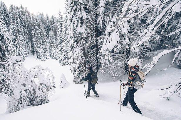 Chaussez vos raquettes à neige et partez vous aussi à l'aventure sur les nombreux itinéraires balisés des Montagnes du Jura...
