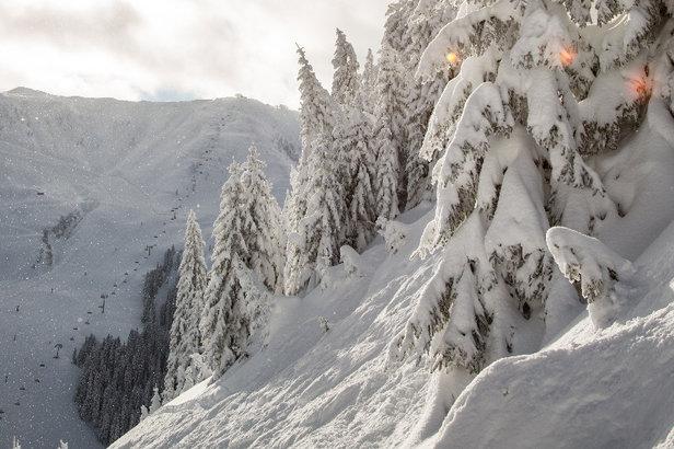 Schneebericht: Noch immer starker Schneefall und Sperrungen, Entspannung ab Mittwoch ©Skiinfo