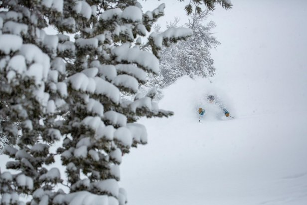 Conditions are all-time in Jackson Hole.  - © Jackson Hole Mountain Resort