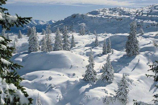 Andalo skier, Italy