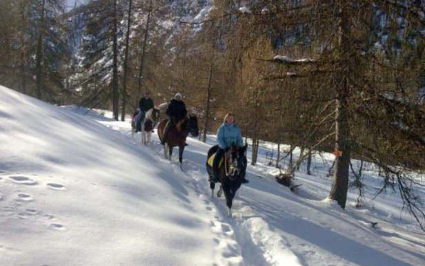 Balade à cheval dans la forêt de Mélèzes des Orres