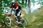 Warsteiner Bikepark - ©Warsteiner Bikerpark