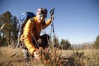 5 Mammoth Hikes to Stop & Smell the Flowers - © Mammoth Lakes Tourism