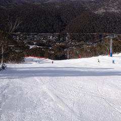 Thredbo, AU: Good All-Rounder - ©Thredbo