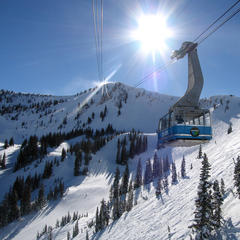 Snowbird tram - © Snowbird Ski and Summer Resort