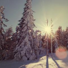 Skipark Erika Kojšovská hoľa - © Skipark Erika