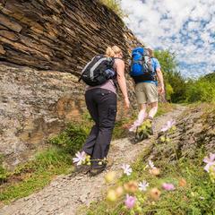 Unterwegs auf dem Moselsteig - © Rheinland-Pfalz Tourismus GmbH, Dominik Ketz