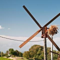 Klapotetz heißen die traditionellen Holzwindräder - sie schützen Weinberge vor Vögeln - ©bergleben.de / Matteo Gariglio