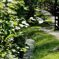 Waalweg im Vinschgau - ©Südtirol Marketing/Helmuth Rier