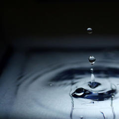 Ein Tropfen Wasser - © flickr_fox_kiyo