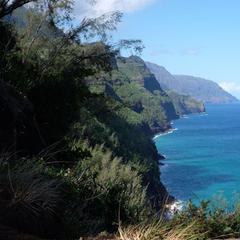 Wandern auf dem Kalalau-Trail: Die Napali-Coast hat man oft im Blick - © bergleben.de/Sebastian Lindemeyer