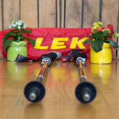LEKI Micro Vario Carbon - © Bergleben.de
