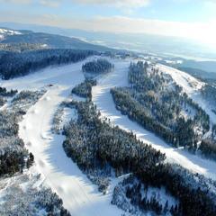 Infografika: Kolik sněhu bylo minulou zimu na českých horách - ©Skiareál Plešivec facebook