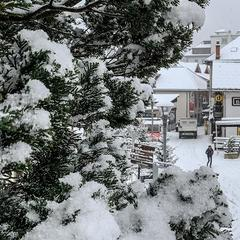 Dec. 1 brings fresh snow to the French Alps - ©Chamonix Mont Blanc/Facebook