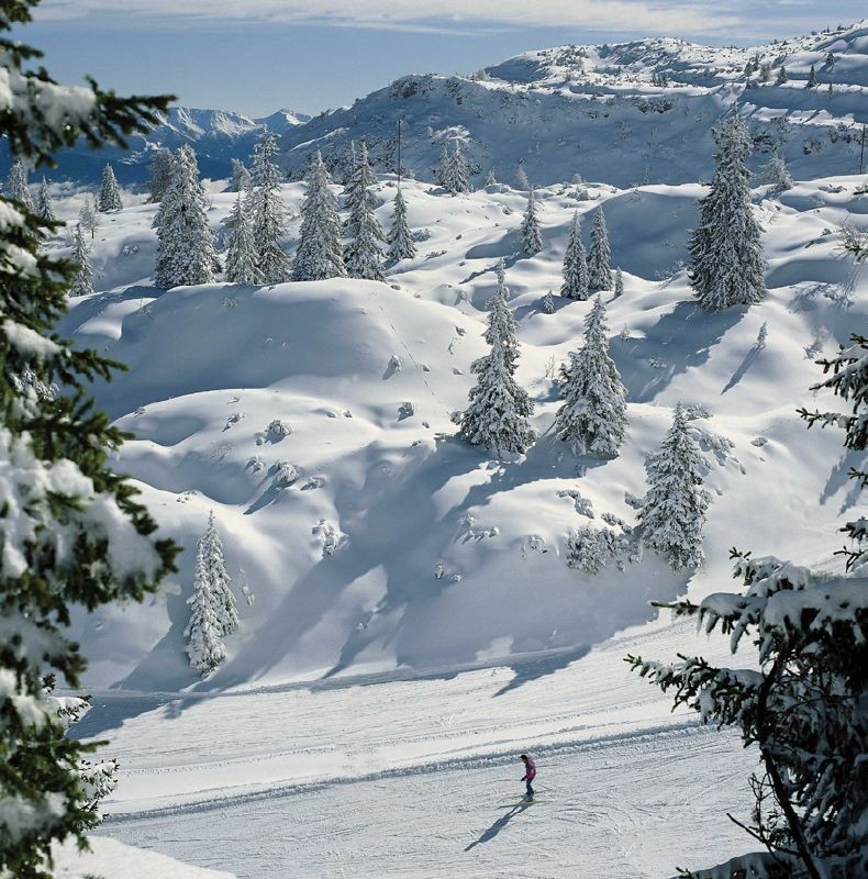 Andalo skier, Italy